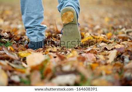 Close up male shoes walking on fall leaves outdoors - stock photo