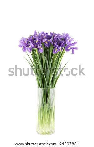 Close-up of a beautiful bouquet of purple irises in a glass vase. Isolated on white background - stock photo