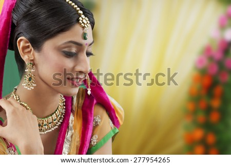 Close-up of a beautiful bride - stock photo