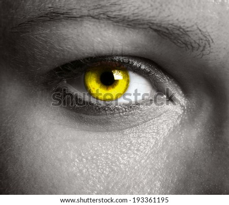 Close up of a beautiful eye - stock photo