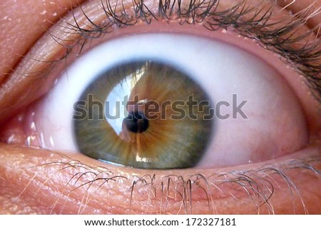 Close-up of a beautiful green eye - stock photo