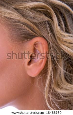 close up of a beautiful woman ear - stock photo