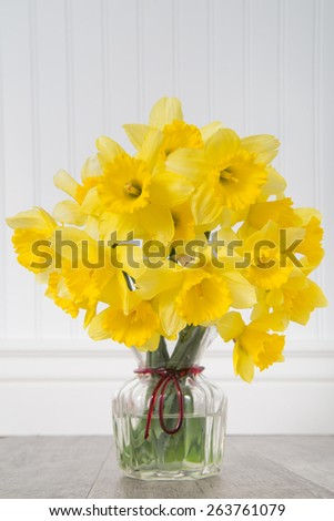 Close up of a bouquet of daffodils in a petite glass vase with a white beadboard background - stock photo
