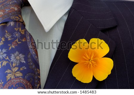 Close-up of a bright buttonhole flower on a businessman's pinstripe suit, contrasting with the flower on his tie. - stock photo