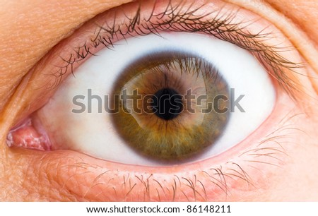 Close up of a brown and green human eye