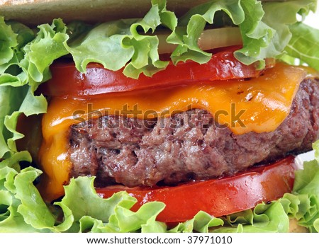 close-up of a cheese burguer with salad