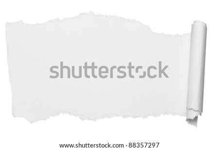 close up of  a curled paper on white background - stock photo
