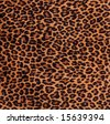 Close-up of a fabric with leopard spots pattern - stock photo