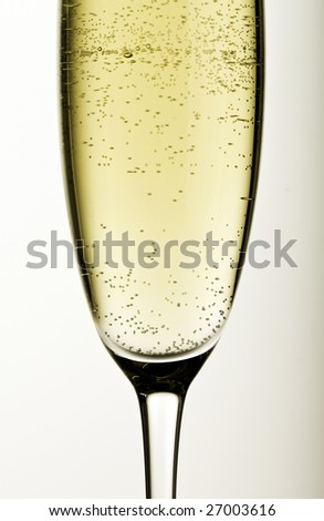 Close-up of a glass of champagne on grey background - stock photo