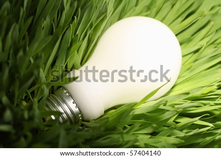 Close-up of a glowing energy saving lightbulb on green grass - stock photo