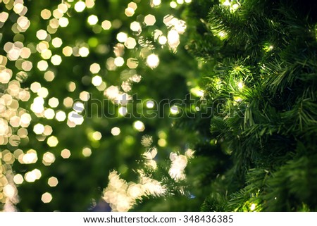 Close up of a green Christmas tree. - stock photo