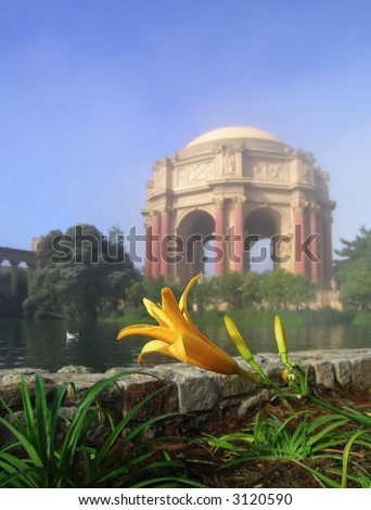 Close-up of a lily at the Palace of Fine Arts, San Francisco on a foggy morning. Fog softens the background giving the shot romantic atmosphere. - stock photo