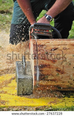 Close up of a logger using a chainsaw to cut slices from a log. Sawdust flying. - stock photo