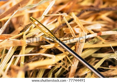 Close-up of a needle in a hay