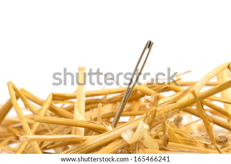 close up of a needle in haystack - stock photo