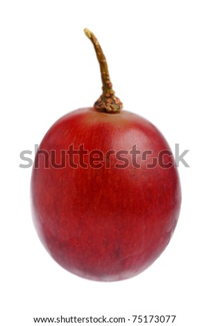 Close up of a red grape isolated on white background. - stock photo