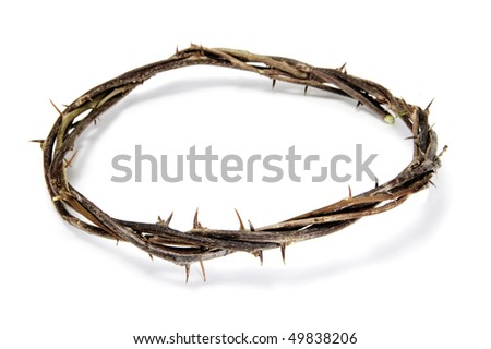 close up of a representation of the Jesus crown of thorns - stock photo