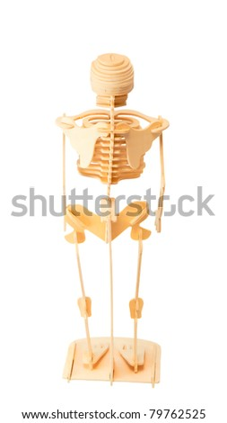 close up of a skeleton isolated on a white background - stock photo