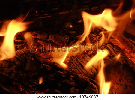 close up of a small camp fire with soft flames