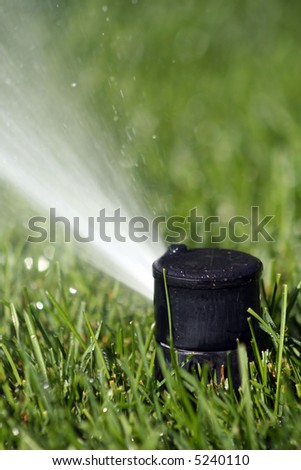 Close up of a sprinkler head spraying green grass - stock photo