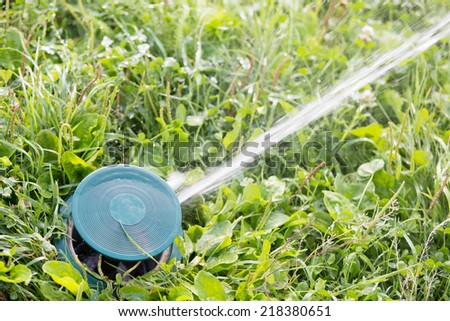 Close up of a sprinkler head watering green grass lawn - stock photo