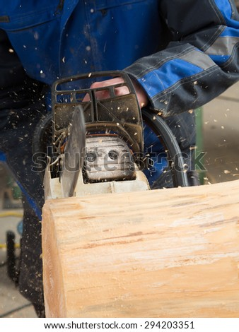 Close up of  a tree trunk which is getting sliced with a chainsaw by a carpenter - stock photo
