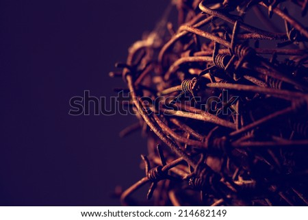 Close up of a twisted barb wire  - stock photo