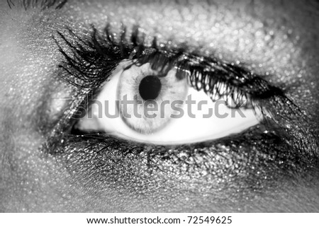 Close up of a woman eyes. - stock photo