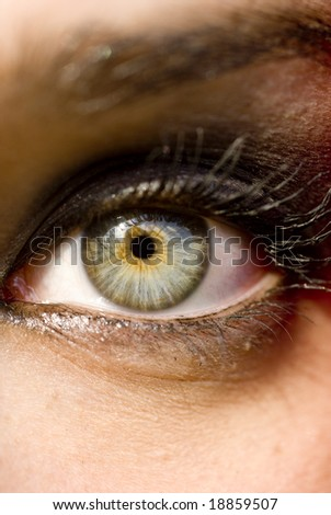 Close-up of a woman's green eye - stock photo