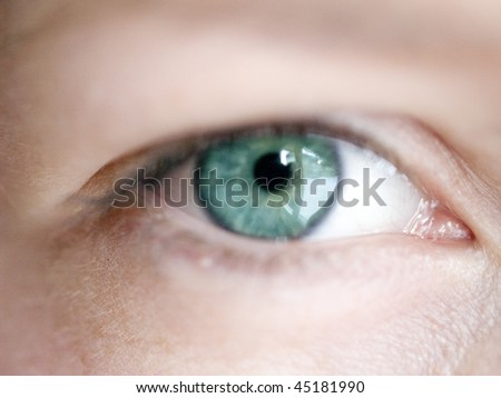 close up of a young girls green eye