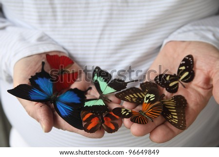 close up of an assortment of butterflies on a man's hands - stock photo
