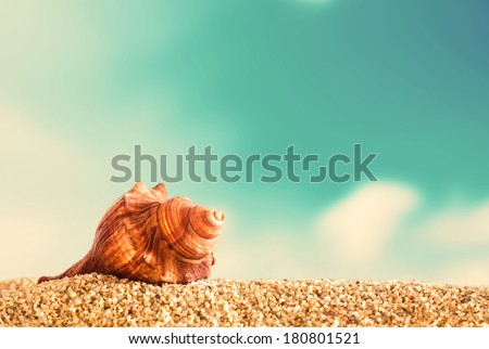 Close up of an orange helical seashell on golden sand on a tropical beach against a cloudy blue summer sky taken low angle with the shell on the skyline - stock photo