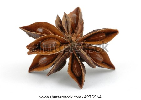 Close up of anise star in isolated white background
