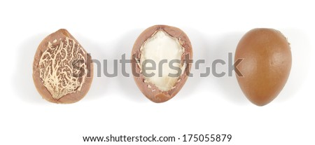 Close up of argan nuts in a row on a white background. Horizontal studio shot. - stock photo
