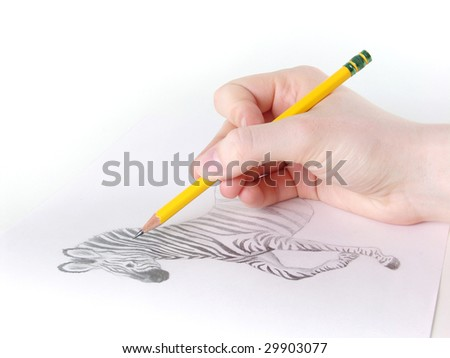 Close-up of artist's hand drawing a zebra. - stock photo