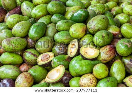 Close up of avocados - stock photo