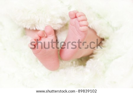 close up of baby feet - stock photo