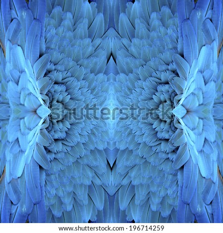 Close up of background pattern of Blue and Gold Macaw bird feathers - stock photo