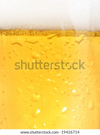 Close up of backlit glass of beer - stock photo