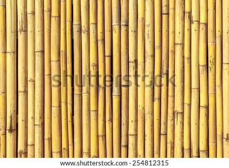 Close up of bamboo fence - stock photo