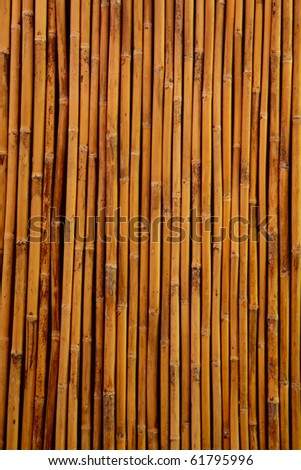 Close up of bamboo wall for background