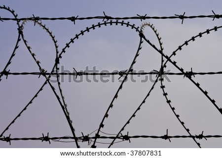 Close up of barbed wire against a colorful sky