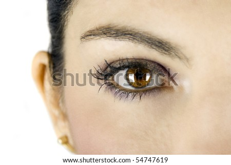 Close-up of big brown eye on white background - stock photo