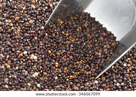 Close up of black quinoa seeds with metal scoop. - stock photo
