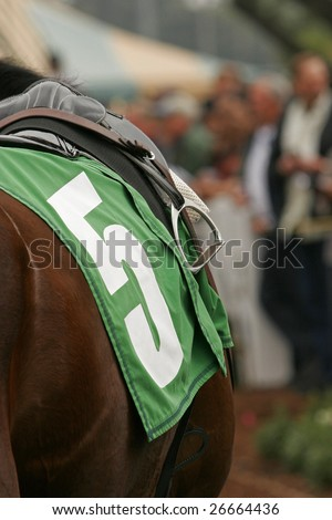 Close-Up of Blanket and Stirrup on Thoroughbred Racing Horse - stock photo
