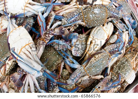 Close up of blue flower crab in a wet market - stock photo