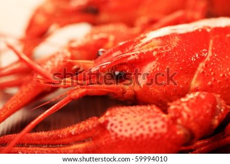 Close up of boiled crawfish. - stock photo