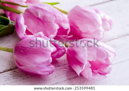 Close up of bouquet of pink tulips laying on antique pink wooden table - stock photo