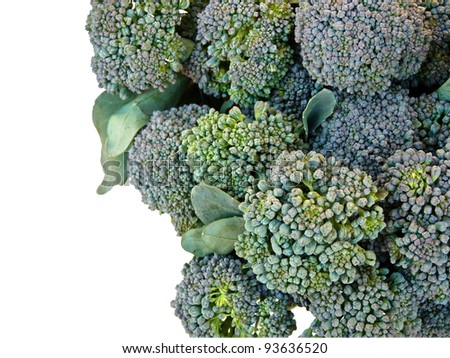Close-up of broccoli florets on white background - stock photo