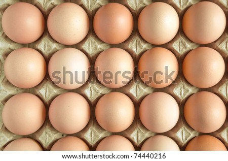 Close up of  brown eggs in the special carrying box. - stock photo